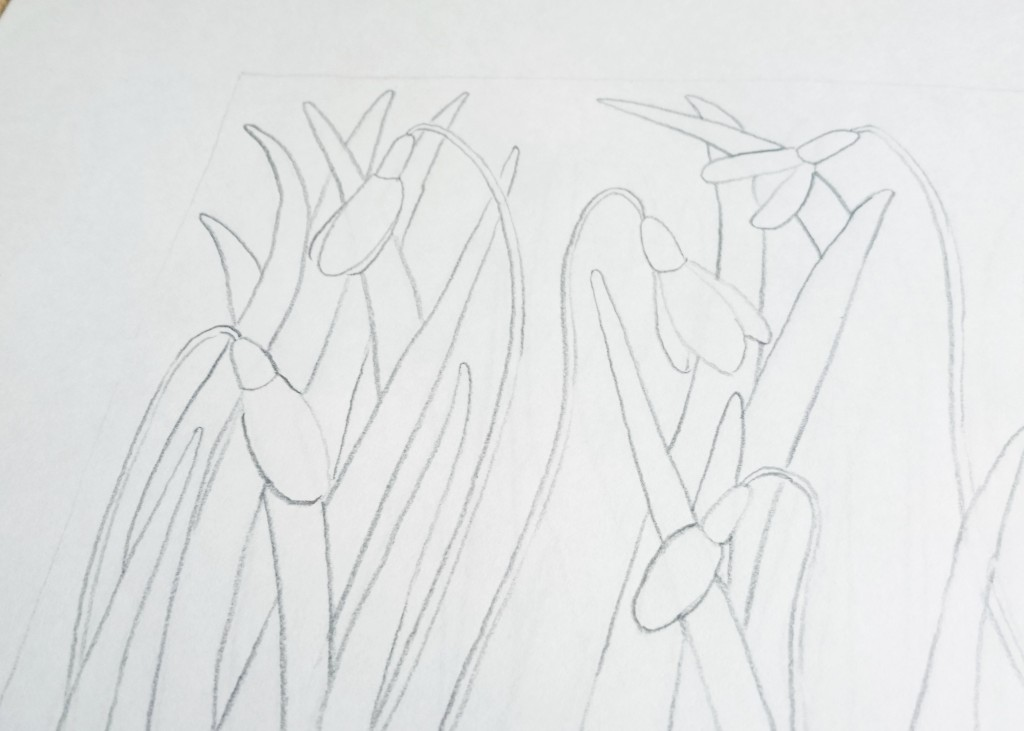 Spring Snowdrops Print by Jo Degenhart drawing