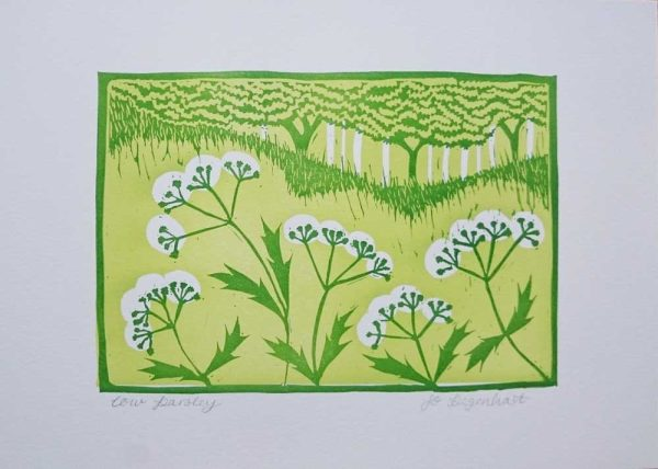 Cow Parsley Original Lino Print by Jo Degenhart