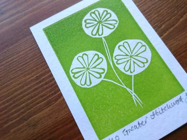 Greater Stitchwort ACEO Lino Print by Jo Degenhart