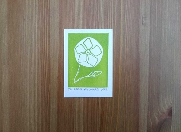 Lesser Periwinkle ACEO Lino Print close by Jo Degenhart