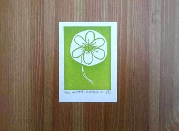 Wood Anemone Lino Print by Jo Degenhart