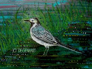 Pied Wagtail painting by Jo Degenhart