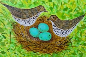 Nesting Song Thrushes by Jo Degenhart